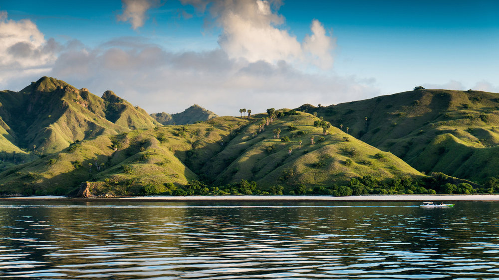 The legendary Komodo Island makes people around the world curious to visit