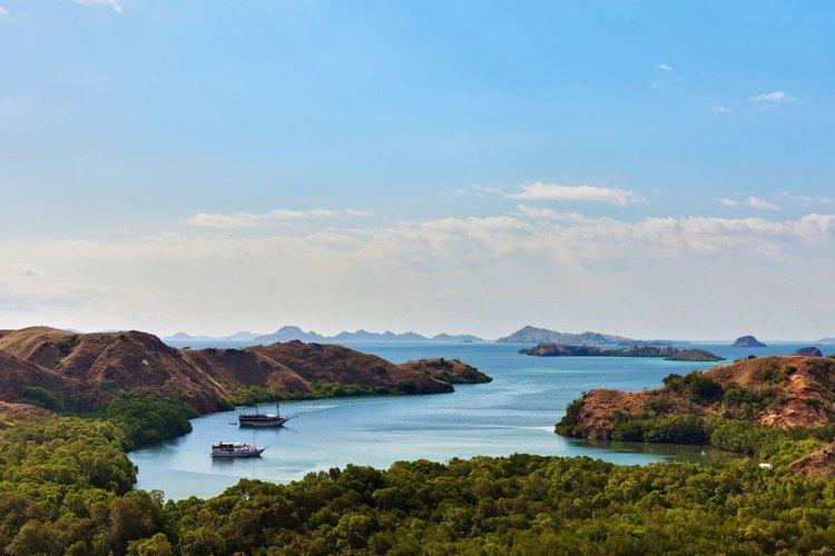 Rinca Island: the dragons