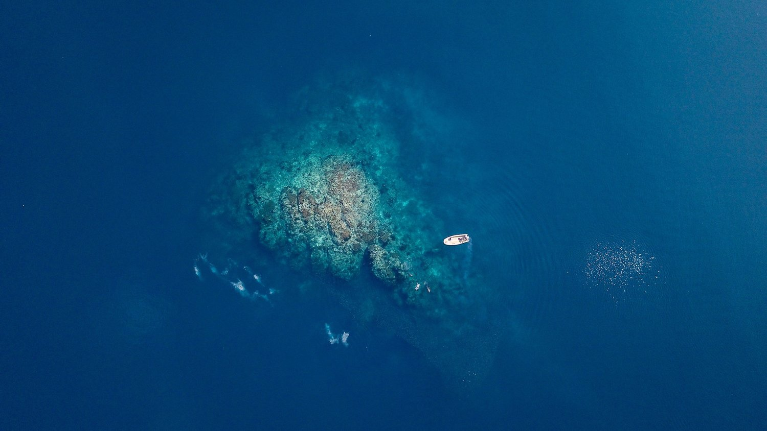 An aerial view of a boat in the middle of ocean