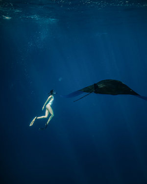 Picture of a guest diving underwater and spot a manta ray from Royal Fortuna liveaboard