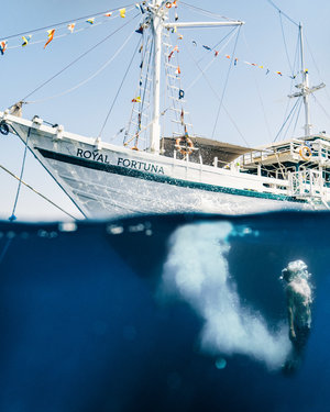 An amazing shot of a guest submerge in the water after jumping from Royal Fortuna liveaboard