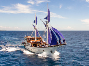 A great Ocean Pure Liveaboard