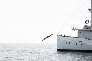 The guest took a dive from Splendour liveaboard to enjoy the water