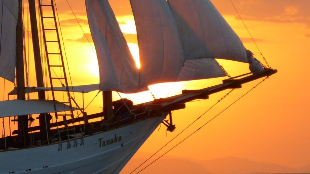 Tanaka liveaboard sailing with the sunset as background