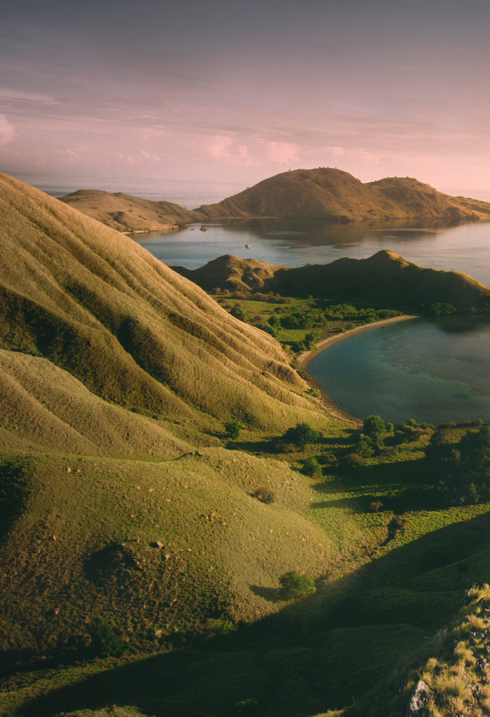 Your Travel Guide to Plan A Smooth Trip to Komodo